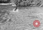 Image of fish catching dog Washington State United States USA, 1929, second 8 stock footage video 65675050359