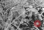 Image of Russian Guerrillas Western Russia, 1944, second 4 stock footage video 65675050363