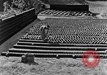 Image of brick making China, 1938, second 3 stock footage video 65675050389
