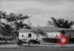 Image of road construction Guam, 1939, second 3 stock footage video 65675050432