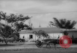 Image of road construction Guam, 1939, second 7 stock footage video 65675050432