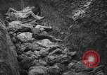 Image of funeral of concentration camp victims Poland, 1944, second 9 stock footage video 65675050452