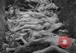 Image of funeral of concentration camp victims Poland, 1944, second 11 stock footage video 65675050452
