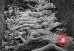 Image of funeral of concentration camp victims Poland, 1944, second 12 stock footage video 65675050452