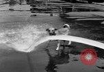 Image of Fire Department's dog Chicago Illinois USA, 1931, second 10 stock footage video 65675050491