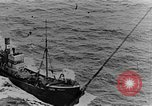 Image of British Fleet English Channel, 1918, second 17 stock footage video 65675050557