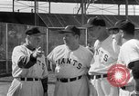 Image of New York Giants Spring training Phoenix Arizona USA, 1954, second 5 stock footage video 65675050608