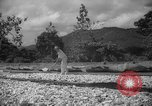 Image of shelling and drying of coconut Caracas Venezuela, 1940, second 10 stock footage video 65675050637
