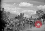Image of mules Caracas Venezuela, 1940, second 9 stock footage video 65675050642