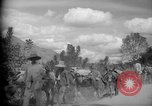 Image of mules Caracas Venezuela, 1940, second 10 stock footage video 65675050642
