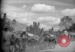 Image of mules Caracas Venezuela, 1940, second 11 stock footage video 65675050642
