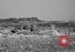 Image of 55th Brigade AAA 90 mm gun under camouflage netting Hammond Louisiana USA, 1943, second 3 stock footage video 65675050732