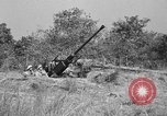 Image of Antiaircraft gunners throw off camouflage and maneuver guns Hammond Louisiana USA, 1943, second 4 stock footage video 65675050733