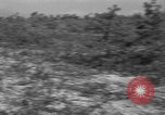 Image of 55th Brigade AAA gun crew trains at gunnery range Hammond Louisiana USA, 1943, second 10 stock footage video 65675050735