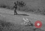 Image of Santo Tomas concentration camp Manila Philippines, 1945, second 6 stock footage video 65675050798