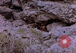 Image of American Marines Saipan Northern Mariana Islands, 1944, second 11 stock footage video 65675050872