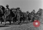Image of 475th Infantry Burma, 1944, second 3 stock footage video 65675050911