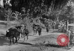 Image of 475th Infantry Burma, 1944, second 9 stock footage video 65675050913