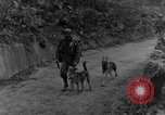 Image of war dogs Man-Tha Burma, 1944, second 5 stock footage video 65675050914