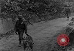 Image of war dogs Man-Tha Burma, 1944, second 6 stock footage video 65675050914