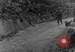 Image of war dogs Man-Tha Burma, 1944, second 8 stock footage video 65675050914