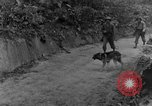 Image of war dogs Man-Tha Burma, 1944, second 9 stock footage video 65675050914