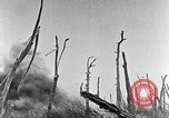 Image of Battle of the Somme France, 1916, second 6 stock footage video 65675051112