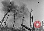 Image of Battle of the Somme France, 1916, second 8 stock footage video 65675051112