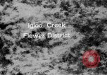 Image of igloo creek Alaska United States USA, 1925, second 4 stock footage video 65675051279