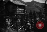 Image of Mount Eilson Alaska USA, 1929, second 8 stock footage video 65675051282