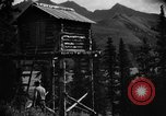 Image of Mount Eilson Alaska USA, 1929, second 10 stock footage video 65675051282