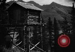 Image of Mount Eilson Alaska USA, 1929, second 11 stock footage video 65675051282