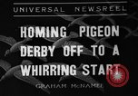 Image of homing pigeons Selby England, 1936, second 1 stock footage video 65675051381