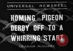 Image of homing pigeons Selby England, 1936, second 2 stock footage video 65675051381