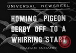 Image of homing pigeons Selby England, 1936, second 3 stock footage video 65675051381