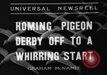 Image of homing pigeons Selby England, 1936, second 6 stock footage video 65675051381