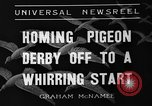 Image of homing pigeons Selby England, 1936, second 7 stock footage video 65675051381