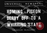 Image of homing pigeons Selby England, 1936, second 8 stock footage video 65675051381