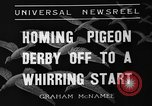 Image of homing pigeons Selby England, 1936, second 9 stock footage video 65675051381