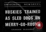 Image of Huskies Wonalancet New Hampshire USA, 1936, second 1 stock footage video 65675051396