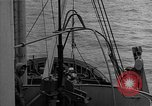 Image of Allied diver Atlantic Ocean, 1944, second 8 stock footage video 65675051435