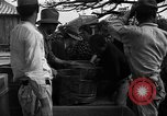 Image of Okinawan civilians Okinawa Ryukyu Islands, 1945, second 8 stock footage video 65675051469