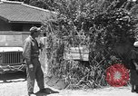 Image of Local men work Okinawa Ryukyu Islands, 1945, second 11 stock footage video 65675051476