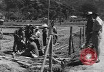 Image of Okinawa civilians Okinawa Ryukyu Islands, 1945, second 7 stock footage video 65675051479
