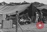 Image of military government headquarters Okinawa Ryukyu Islands, 1945, second 11 stock footage video 65675051484
