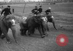 Image of elephant race Columbus Ohio USA, 1935, second 9 stock footage video 65675051628