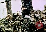 Image of Battle of Okinawa Okinawa Ryukyu Islands, 1945, second 1 stock footage video 65675051716
