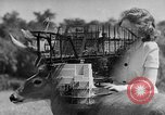 Image of Construction of Southside Bridge in Charleston West Virginia USA, 1937, second 1 stock footage video 65675051768