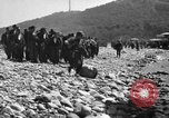 Image of German prisoners Saint Raphael France, 1944, second 12 stock footage video 65675051849