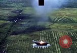 Image of open field Vietnam, 1967, second 5 stock footage video 65675051863
